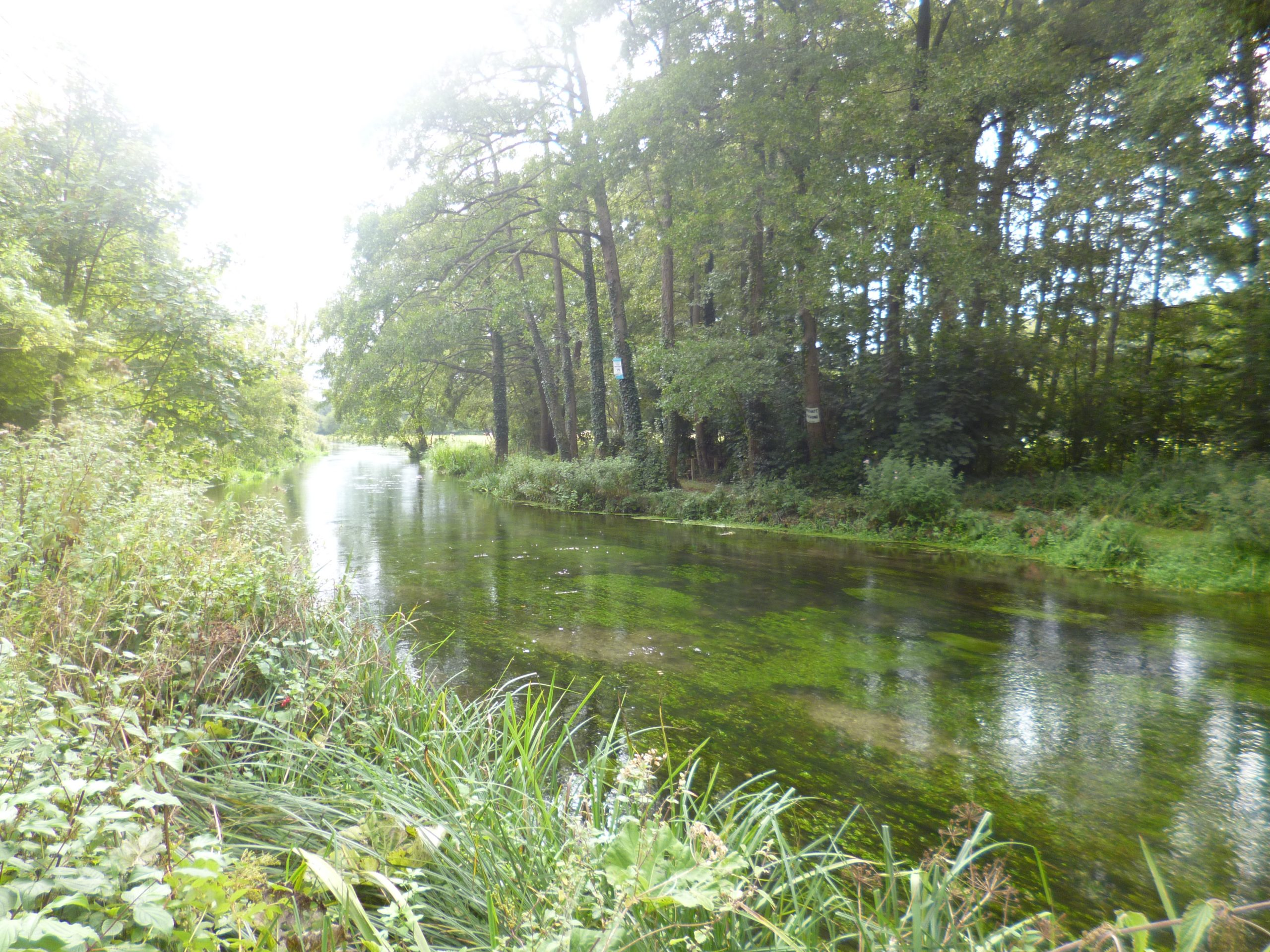 River, Itchen, River Itchen, Town planning,
